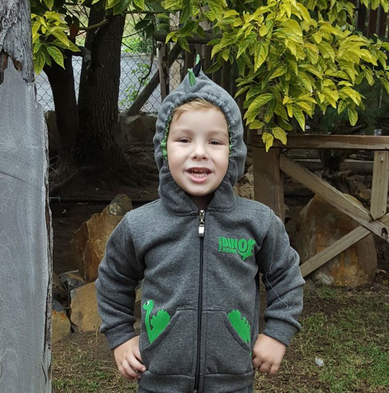 dinosaur kids hoodie